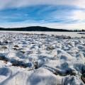 Naučná stezka Olšina... jako v zimní pohádce. Znáte? 🙃  #rekavltava #rekavltavaig #vltavariverig #vltavariver #usek2ig …