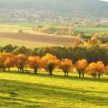 Takovou krásu uvidíte v PodKletí 🍂🍁  #rekavltavaig #rekavltava #vltavariverig #vltavariver #usek2ig #usek2 #jiznicechy …