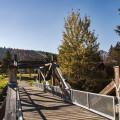 Malebná obec Borová Lada leží na Teplé Vltavě na hranici NP Šumava, 25 km západně od Prachatic a 10 km jihozápadně od…