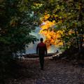 Procházky do přírody jsou v tomto období fajn! Nemyslíte? ☺️  #rekavltavaig #rekavltava #usek3ig #usek3 #budejovicko …