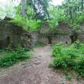 Karlův Hrádek - zřícenina loveckého hrádku ukrytého v lesích. Toto romantické místo najdete nad řekou Vltvavou poblíž…