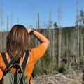 Šumavský národní park je opravdu nádherný. Obzvláště v okolí pramenů Vltavy! Na jaře si tam můžete užít krásnou přírodu…