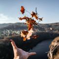 Posázaví a vyhlídka Bednář! 🥰  #rekavltavaig #rekavltava #vltavariverig #vltavariver #usek4ig #usek4 #posázaví …
