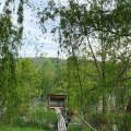 Hleďsebský rybník 🤩 . . . . #rekavltavaig #rekavltava #usek6ig #usek6 #melnicko #masvyhlidky #nature