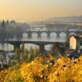 Podzim Praze sluší! :)   #rekavltavaig #rekavltava #vltavariverig #vltavariver #usek5ig #usek5 #praha #prague #autumn …